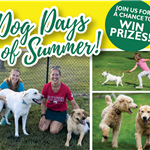 2021 Dog Days of Summer in Elk River